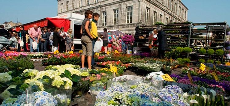 Uitstap Maastricht markt