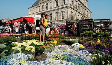 Uitstap Maastricht vrijdagmarkt
